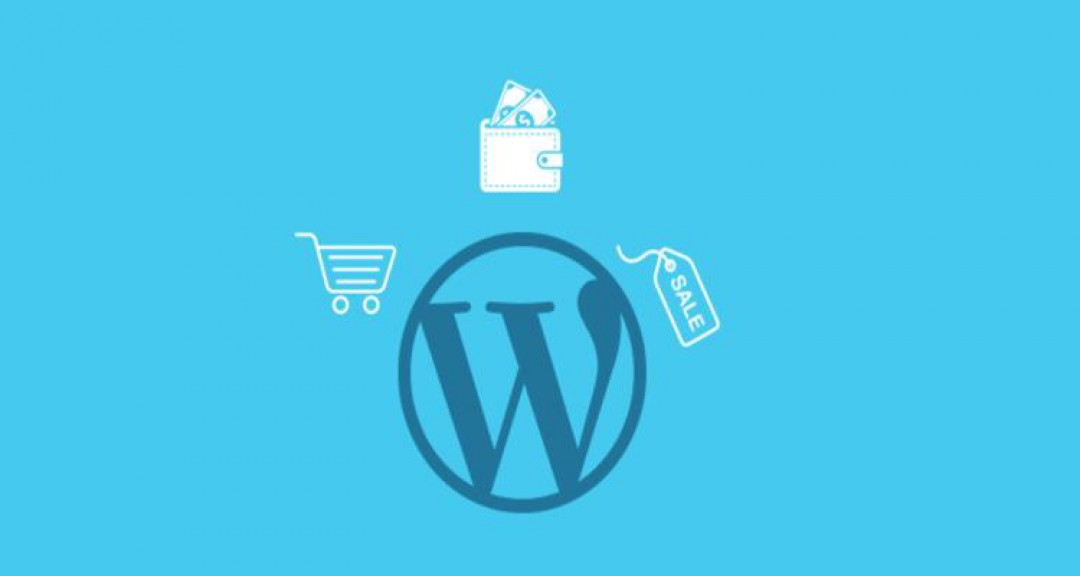 5 Steps To Successfully Launch A WordPress-based E-Commerce Store
