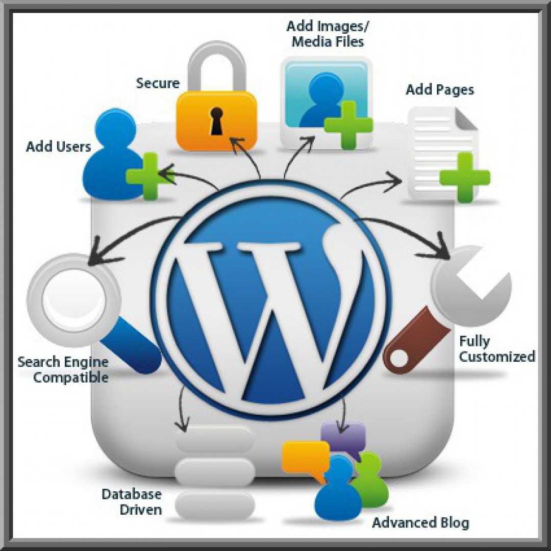 wordpress plugin developers India