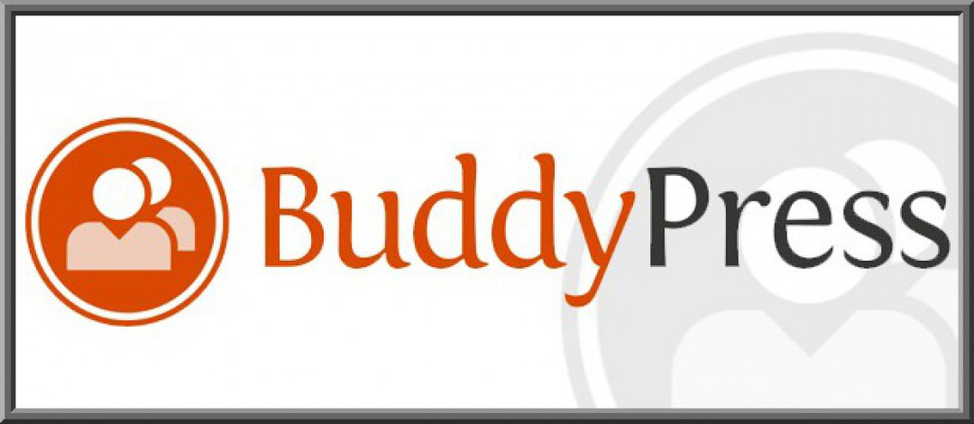 What Makes BuddyPress A Popular Way To Build A Social Network?