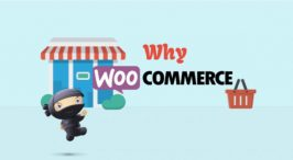 Why WooCommerce is good for E-Commerce Business