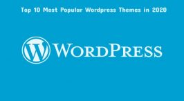 Top 10 WordPress Themes