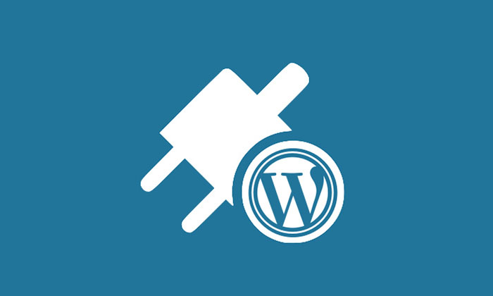Important Factors To Select Plugins For WordPress Website Development