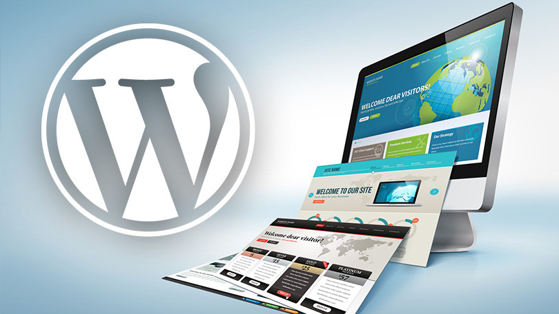 How to Select The Best & Reliable Theme for WordPress Website Development?