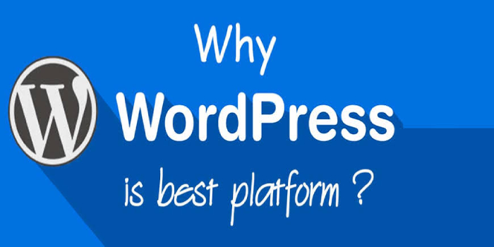 Why WordPress CMS Is Perfect Choice for Web Development?