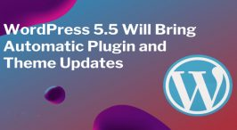 WordPress 5.5 Preview