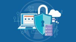 WordPress Malware Attacks: Common Vulnerabilities &Tips to Manage Them