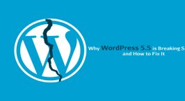 Reasons Why WordPress 5.5 is Breaking Your Site and How to Fix It