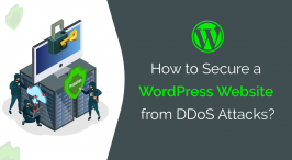 Secure a WordPress Website from DDoS Attacks