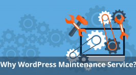 Why WordPress Maintenance Service Needed for Business Operation