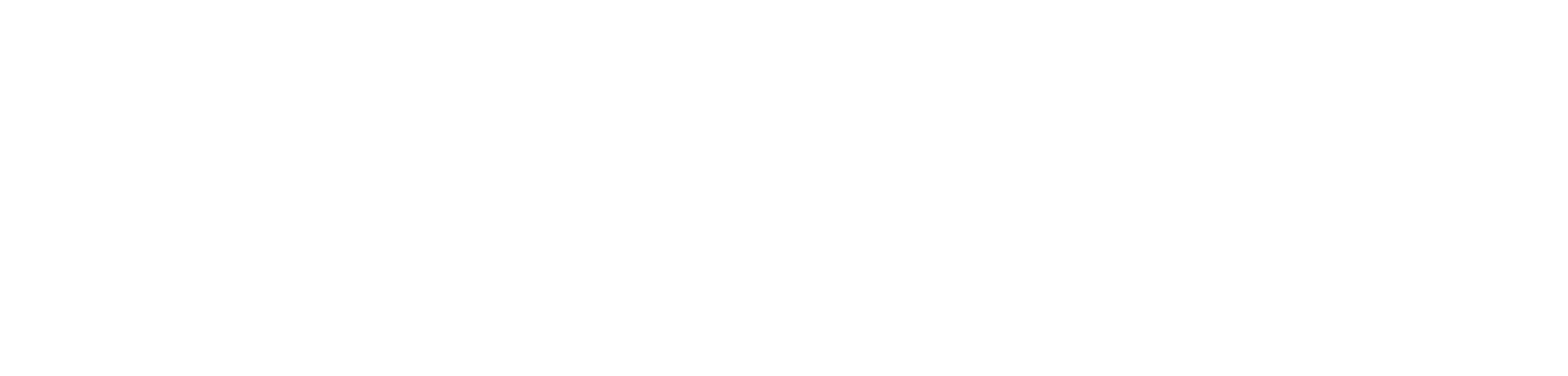 Custom BuddyPress Development Services